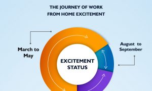 Journey of work from home excitement